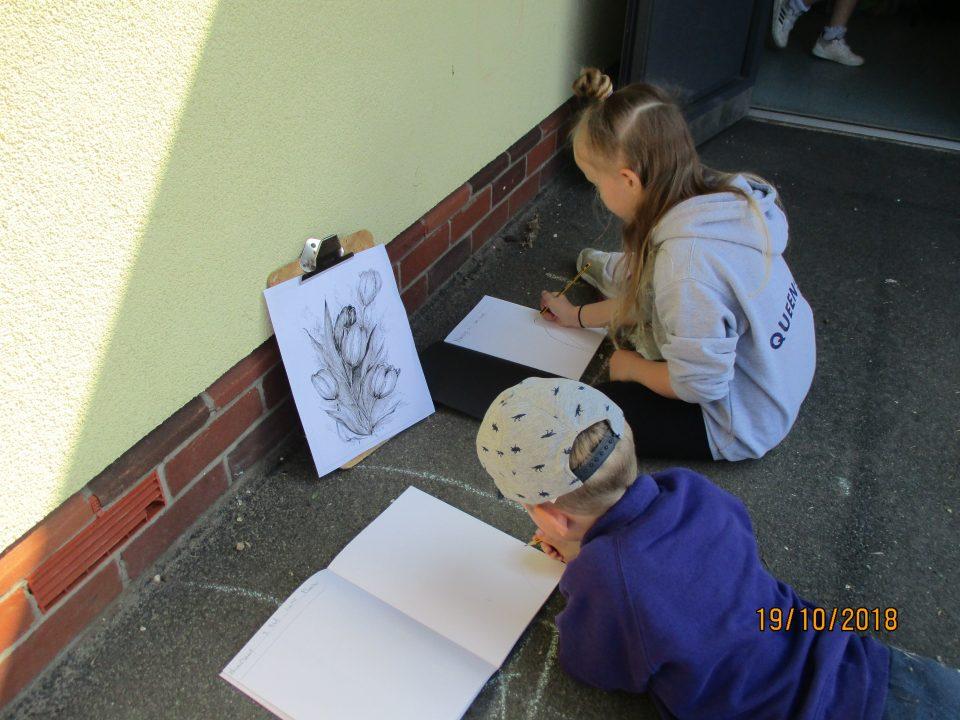 Sketching Plants